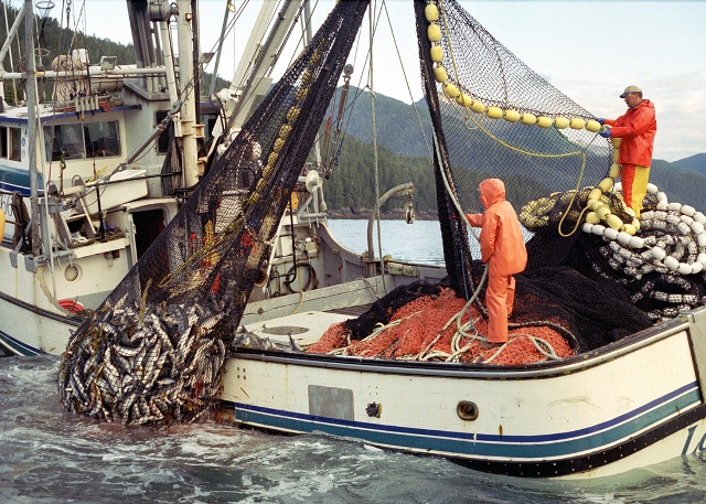 Dünyadaki En Tehlikeli 11 İş - www.dergikafasi.com